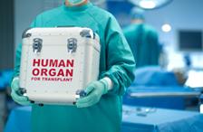 Organ Donation / Transplantation